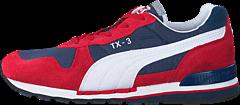 Puma - TX-3
