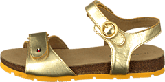 Tommy Hilfiger - Pisa 2A Gold