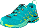 Salomon - XA PRO 3D GTX® W 10-YR LTD Real Blue/ Lucite Green