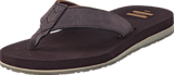 Toms - Carlio Flip-Flop Chocolate Brown