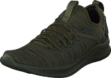 Puma - Ignite Flash Evoknit Forest Night-castor Gray